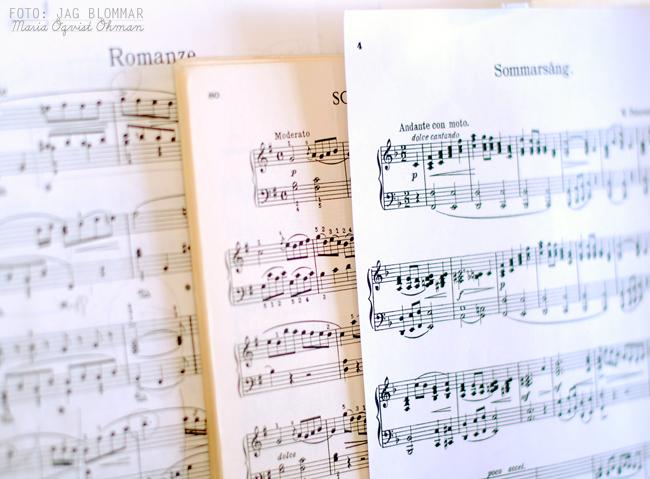 Piano (8)w