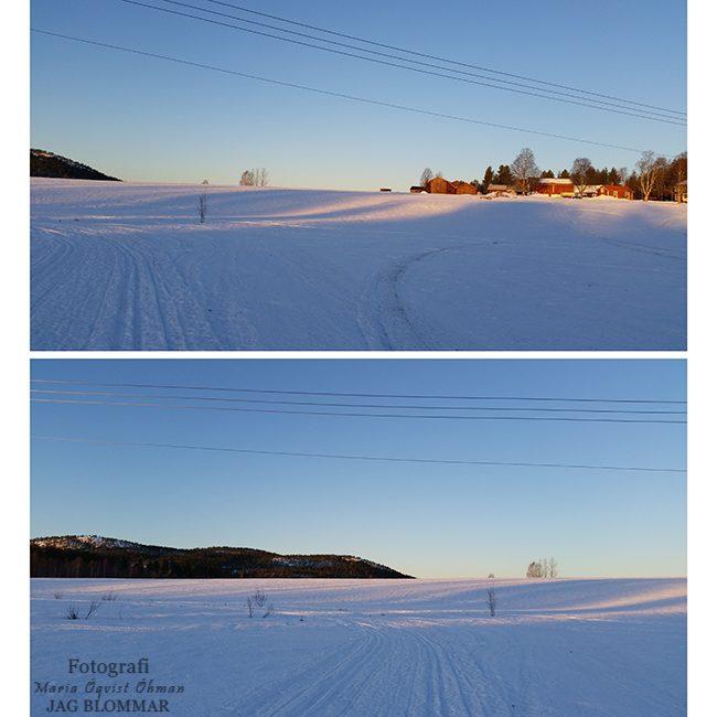 Skidor_på_morgonenW
